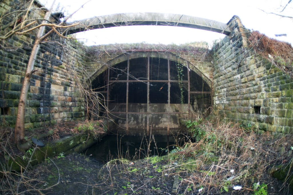 Monk Pit Branch (disused) (11).jpg